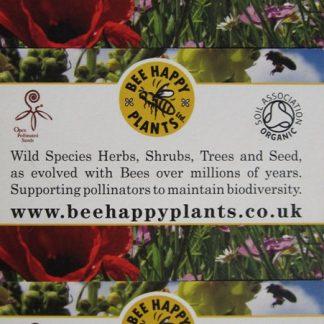 Bee Happy Plants –